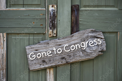 Poster Texas Gone to Congress.