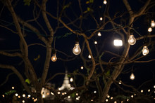 Light Bulbs Decoration