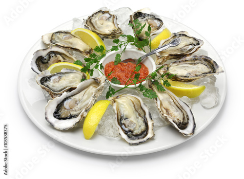 Poster Coquillage fresh oysters plate isolated on white background
