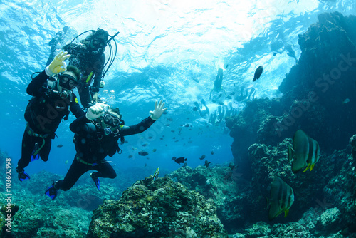 Okinawa Scuba Diving Canvas Print