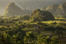 Panoramic View Over Landscape With Mogotes In Vinales Valley ,Cu