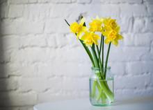 Yellow Daffodils In Glass Jar White Brick Wall Background