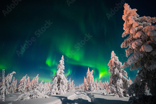 Wall Murals Northern lights Winter night landscape with forest, road and northern light over the scene