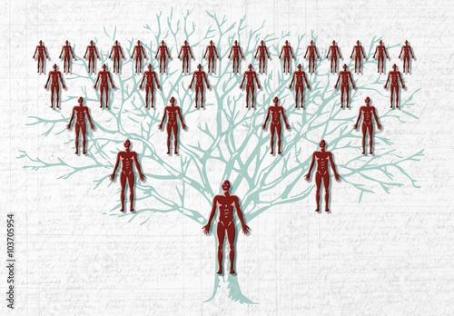 family tree Wallpaper Mural