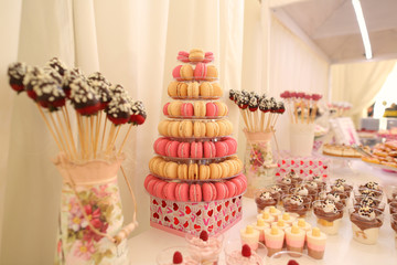 Delicious chocolate cakepops on candy buffet