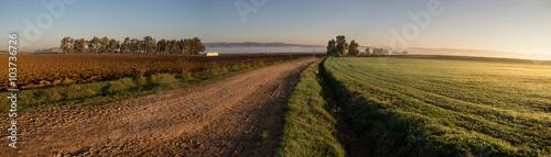 Strada di campagna all'alba Canvas Print