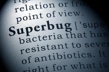 Definition Of Superbug