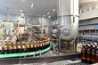 Automatisierung in der Lebensmittelindustrie - Bierflaschen in einer Brauerei - Produktion von Bier // Automation in the food industry - beer bottles in a brewery