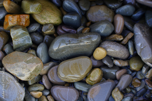 Fotomural  Colorful pebbles