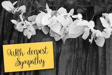 """With Deepest Sympathy"" Note W..."