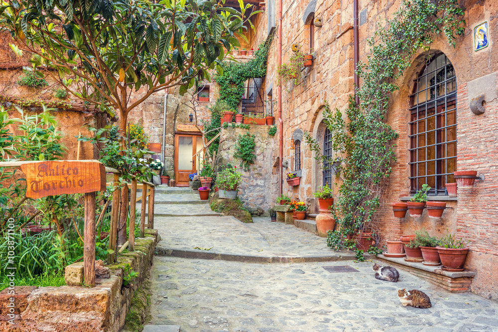 Fototapety, obrazy: Old town Tuscany Italy