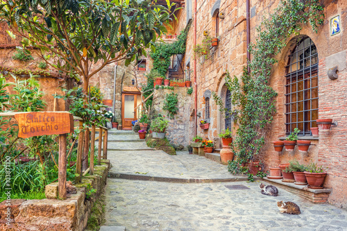 Photo Stands Tuscany Old town Tuscany Italy