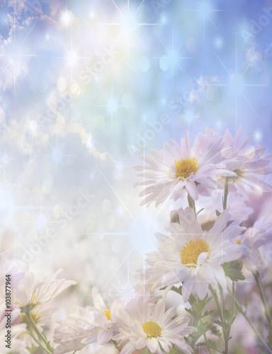 Fototapeta flowers and sunlight obraz na płótnie