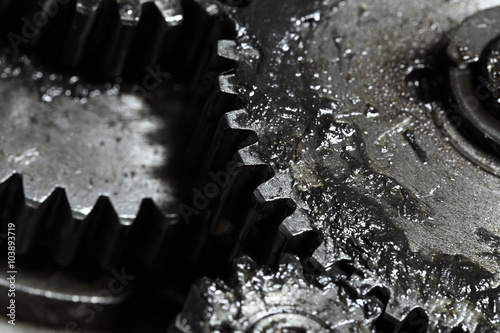 Fototapeta Contact of gear wheels in mechanism, concept of business partner obraz