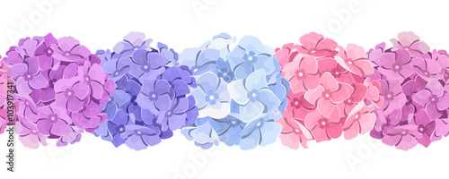 Tablou Canvas Vector horizontal seamless background with pink, blue and purple hydrangea flowers