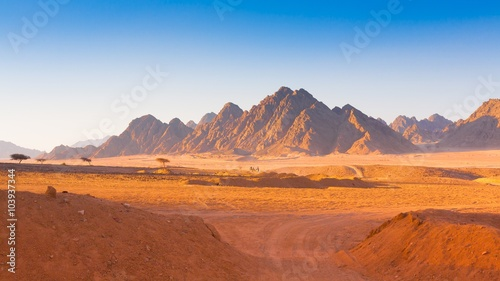 Photo sur Toile Orange eclat Egypt desert