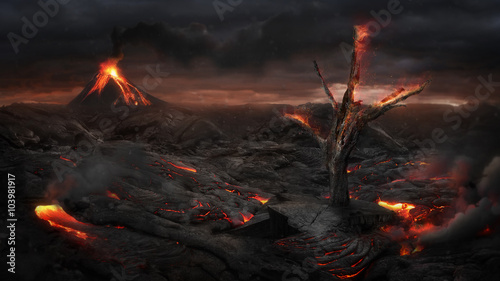 Obraz na płótnie Fire tree in the volcanic landscape