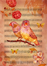 Music Of Nature Vintage Collage With Watercolor Flowers And Butterflies
