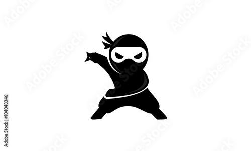 Photo  ninja logo v.2