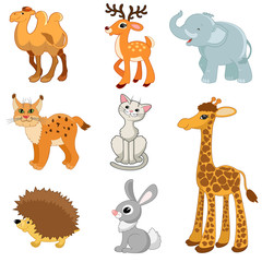 elephant, lynx, cat, giraffe, hedgehog, hare, camel, deer