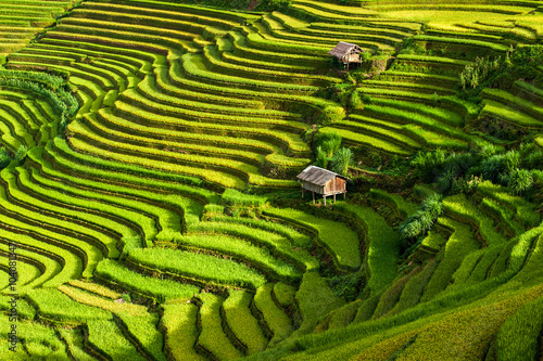 Autocollant pour porte Les champs de riz The terraced rice paddy in Mu Cang Chai district of Yen Bai province, north Vietnam.