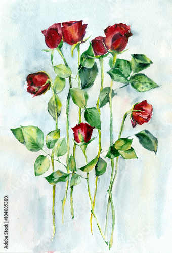 Photo  Watercolor painting. Red roses with green leaves on a long stems.