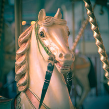 Head Of Horse In A Merry Go Round Instagram Look