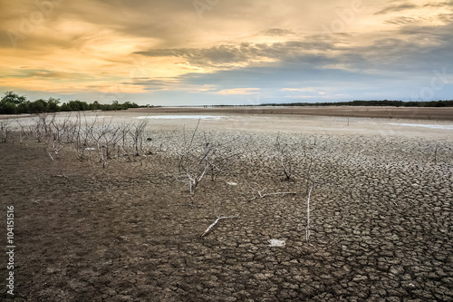 Deurstickers Droogte Land with dry and cracked ground. Desert