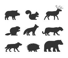 Vector Set Of Figures Of Wild Animals.