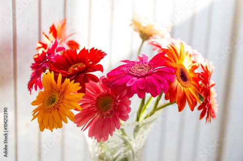 Poster de jardin Dahlia Colorful gerbera flowers on the wooden background