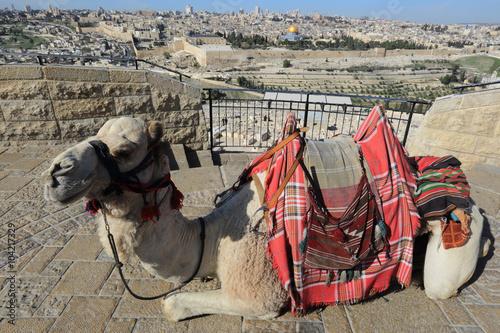 Fotografía Mount of Olives, Jerusalem