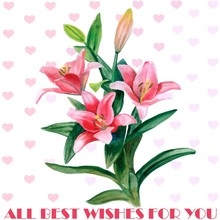 Hand Drawn Watercolor Lily Flowers Greeting Card Design
