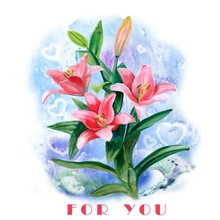 Hand Drawn Watercolor Lily Flowers