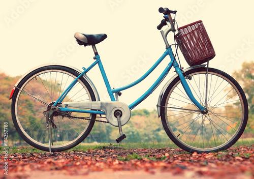 Aluminium Prints Bicycle Vintage bicycle waiting near tree, in vintage retro tone