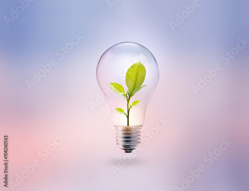 Photo  light bulb with energy and fresh green leaves inside on pastel