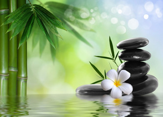 Fototapeta spa stones with frangipani