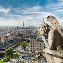 Gargoyle And City View From Th...