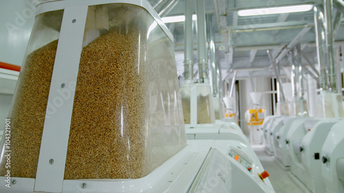 Fotografie, Obraz  Electrical mill machinery for the production of wheat flour