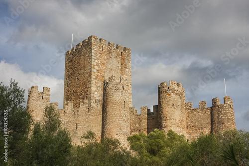 Fotografie, Obraz  Amourol castle, Portugal
