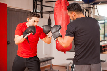 Fototapeta Sport Young men sparring in boxing room