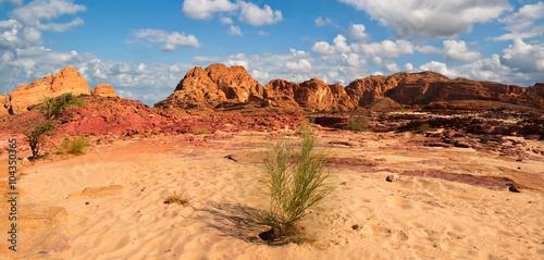 Tuinposter Sinai desert landscape