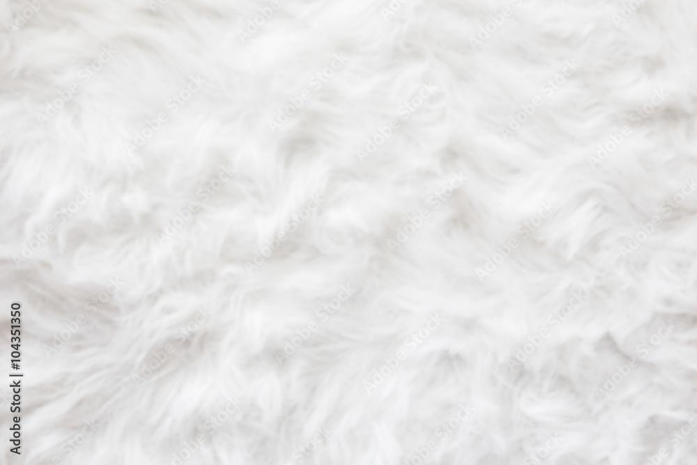 Fototapeta De-focused Sheep wool fur background texture wallpaper.
