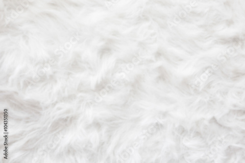 De-focused Sheep wool fur background texture wallpaper. Fototapeta