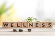Leinwandbild Motiv Wellness sign with wooden cubes