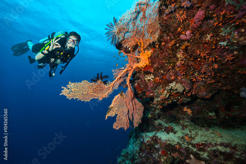 Photo  Scuba diver explore a coral reef showing ok sign