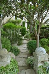 Fototapeta Jardin provençal