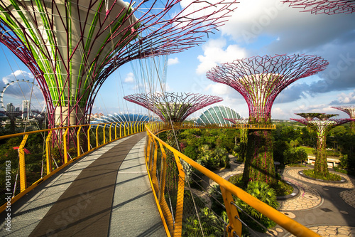 Park Gardens by the Marina Bay at Singapore.