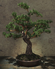 Decorative Bonsai Tree