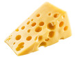 Piece of Swiss cheese.