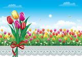 Fototapeta Tulipany - Card with tulips
